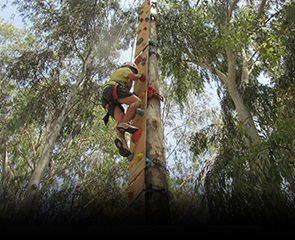 קיר טיפוס אנכי בגובה 7 מטר